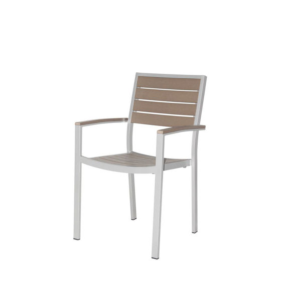 Picture of Napa Dining Arm Chair (Silver & Gray) SC-2405-163